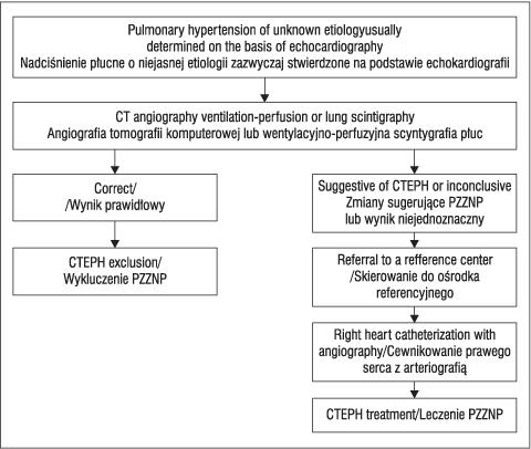 Chronic thromboembolic pulmonary hypertension