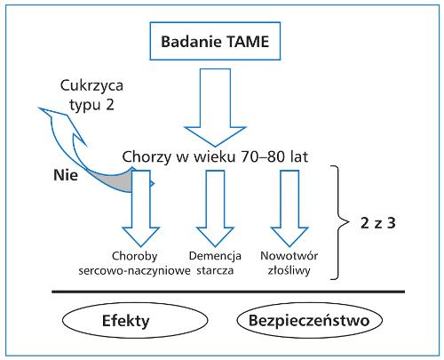 Metformina – panaceum dzisiejszych czasów? Magdalena Potempa, Paweł Jonczyk, Kinga Szczerba, Beata Kandefer, Dariusz Kajdaniuk