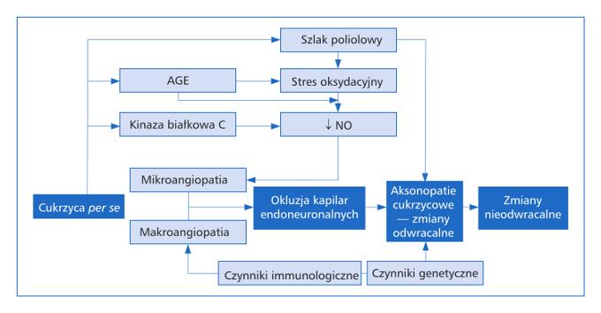 Enteropatia cukrzycowa – wciąż niepokonana? Aleksandra Tomaszewska, Beata Mrozikiewicz-Rakowska, Leszek Czupryniak