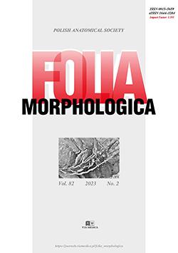 Folia Morphologica